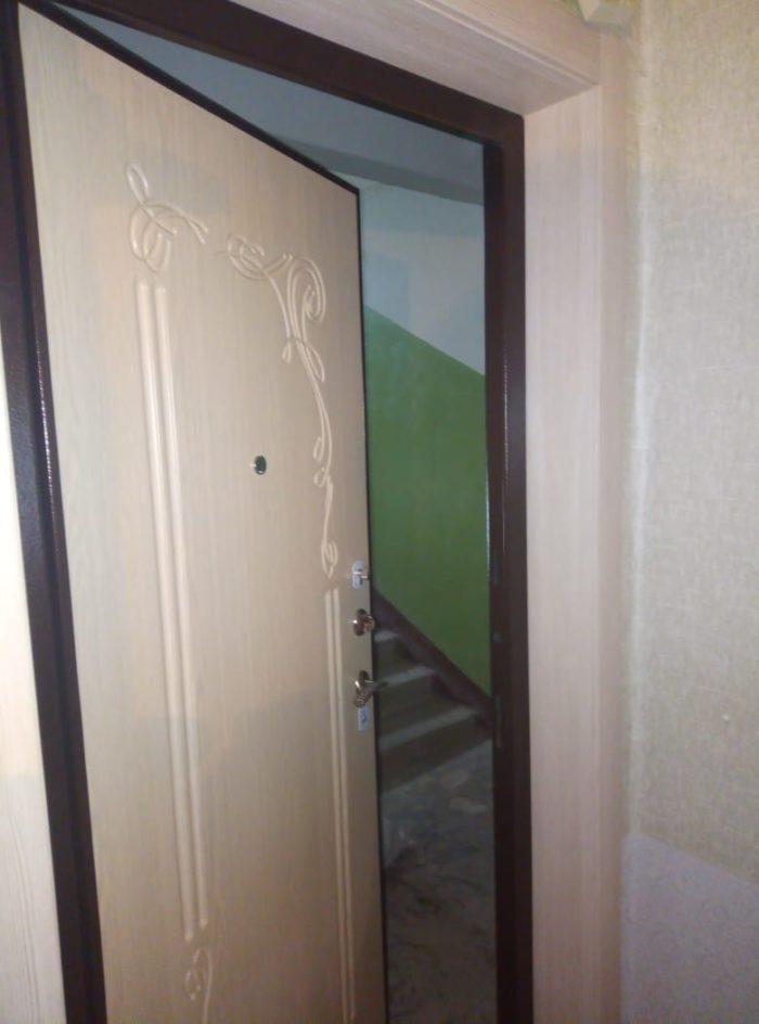 Дверь входная Левзея Аргус
